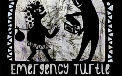 Emergency Turtle shadow puppetry