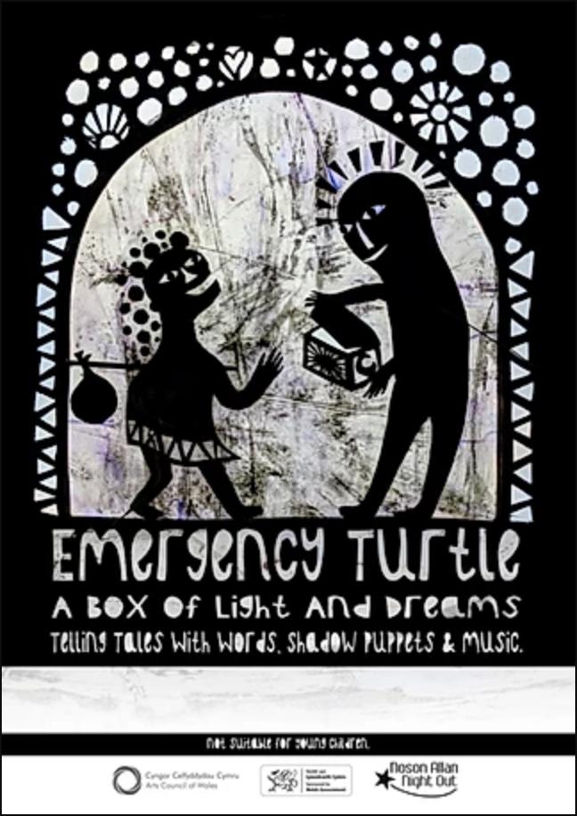 Emergency Turtle